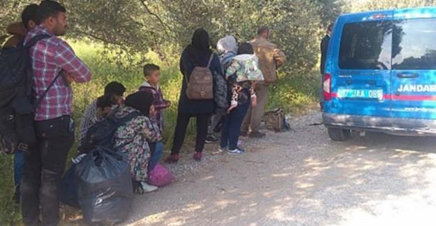Balıkesir'de Göçmen Kaçakçılığı Operasyonu
