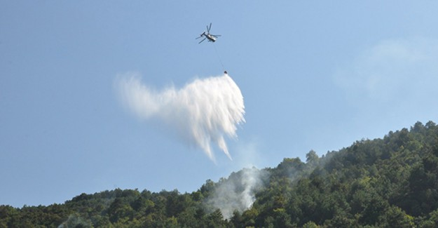 Sinop'ta Korkutan Orman Yangını