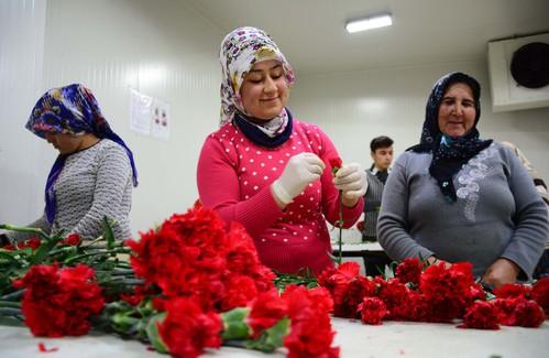 Rusya'dan Türkiye'ye Sevgililer Günü Kazığı